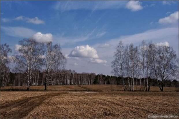 Весна: освобождение полей