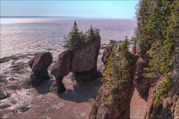 4452331456 fb977dc662 b Природное чудо   скалы Хоупвелл в заливе Фанди