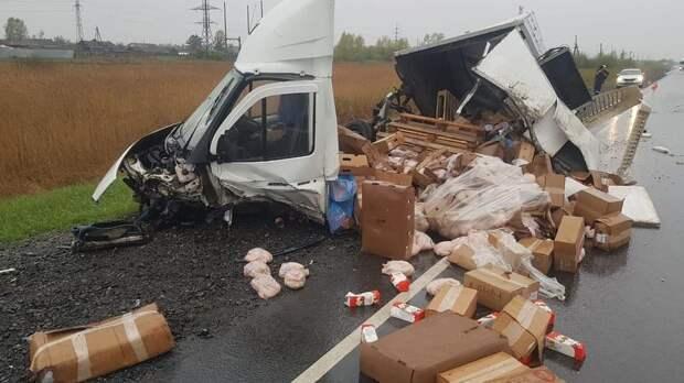 Пять человек погибли в ДТП под Красноярском