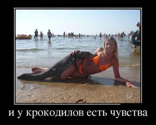 Про тягу к прекрасному, русский маркетинг и веселого молочника ...