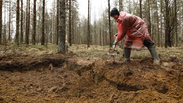 Вологодские поисковики подняли останки еще 68 солдат Великой Отечественной