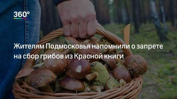 Жителям Подмосковья напомнили о запрете на сбор грибов из Красной книги