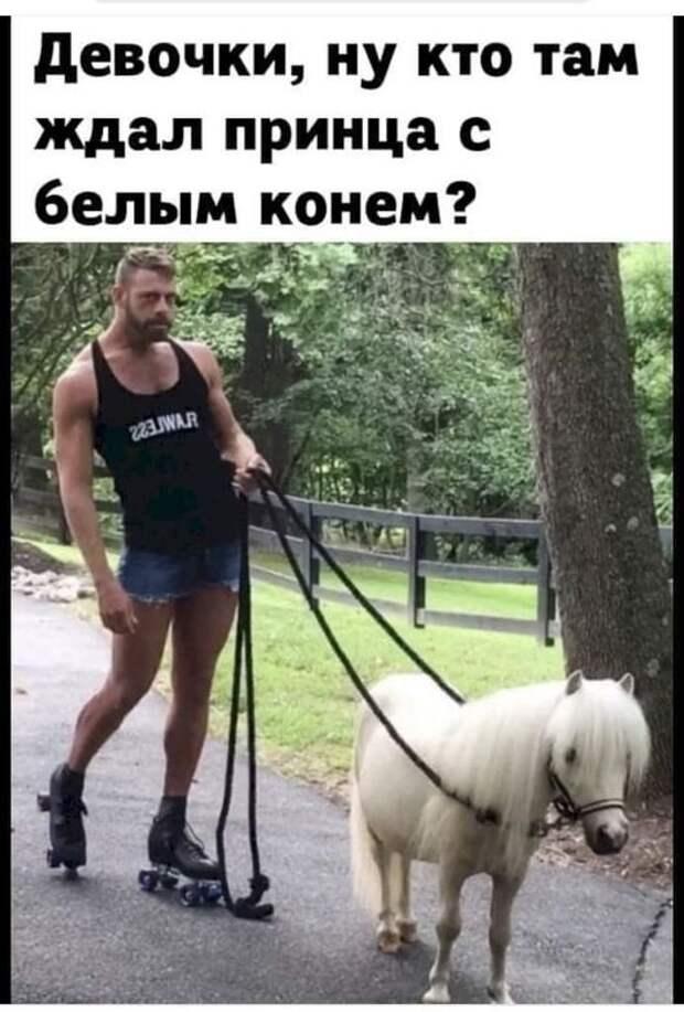 Возможно, это изображение (1 человек, стоит и текст «девочки, ну кто там ждал принца с белым конем? 223.WA.R»)