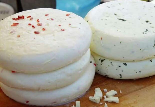 Домашний сыр на завтрак: простой рецепт из 3 ингредиентов