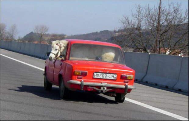 Странные персонажи на дорогах