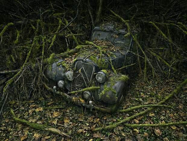 """Фотопроект """"Парковка в раю"""""""