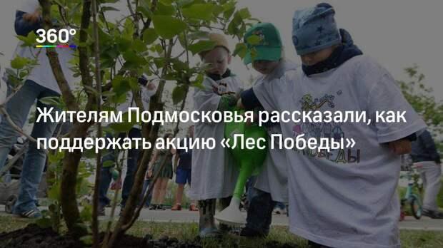 Жителям Подмосковья рассказали, как поддержать акцию «Лес Победы»