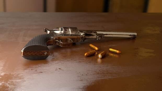 Госдума рассмотрит законопроект об ужесточении правил получения оружия в России