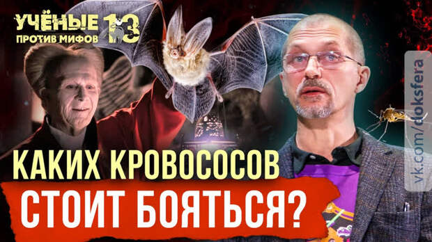 Опасные кровососы: от летучих мышей до пиявок. Евгений Рыбалтовский. Учёные против мифов 13-2