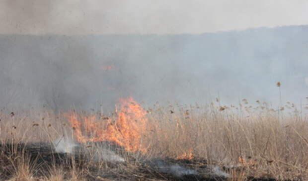 9мая высокая пожарная опасность прогнозируется вСвердловской области