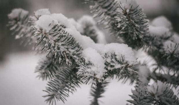 ВГидрометцентре изменения погоды наУрале назвали «фантастическими»