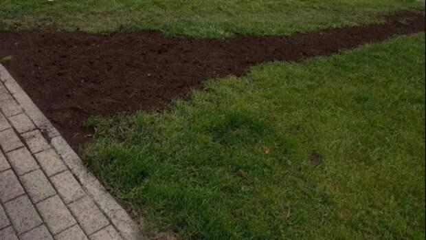 В парке «Зелёная река» в Лефортове рекультивировали газон