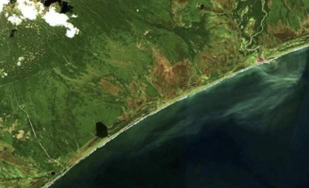 Назван предполагаемый виновник загрязнения океана на Камчатке
