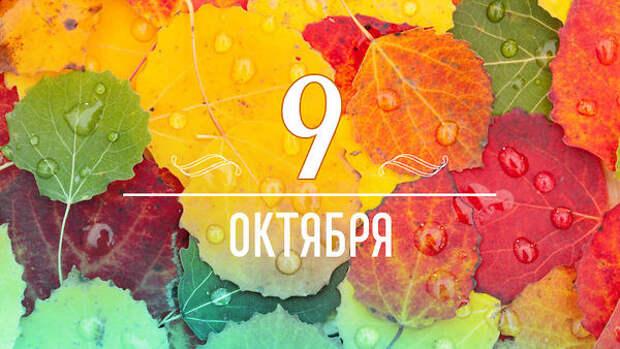 Нумерологический прогноз по дате рождения на 9 октября