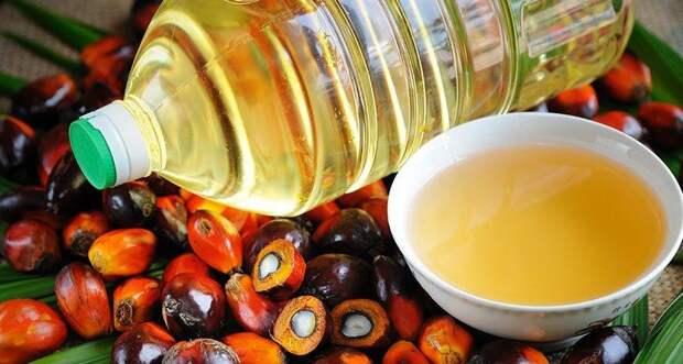 Продукты с пальмовым маслом исчезнут с российских прилавков?