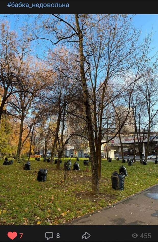 Мешки с листьями на Лётчика Бабушкина уберут до конца недели – управа