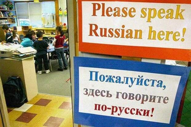 «Самый богатый, меткий и поистине волшебный»: Учителя призвали создать новый вид полиции в России