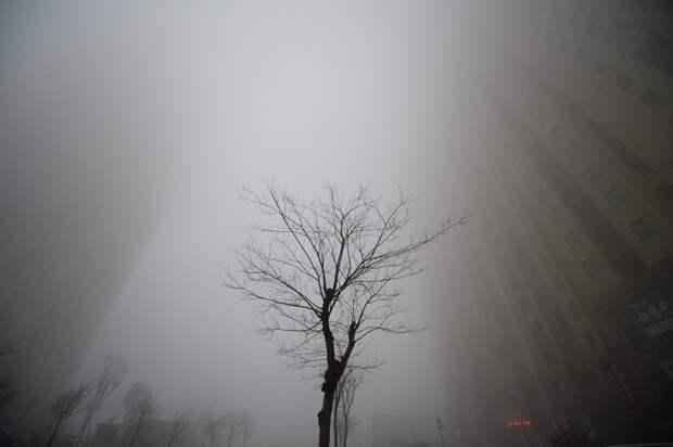 Сильный смог
