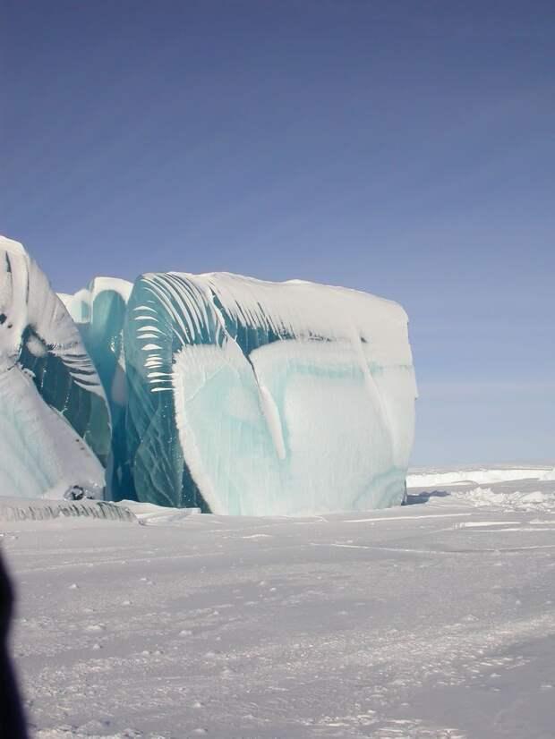 frozen07 Самые красивые фотографии морозной зимы