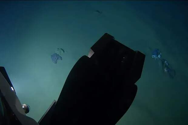 Плюшевого мишку обнаружили на 10-километровой глубине