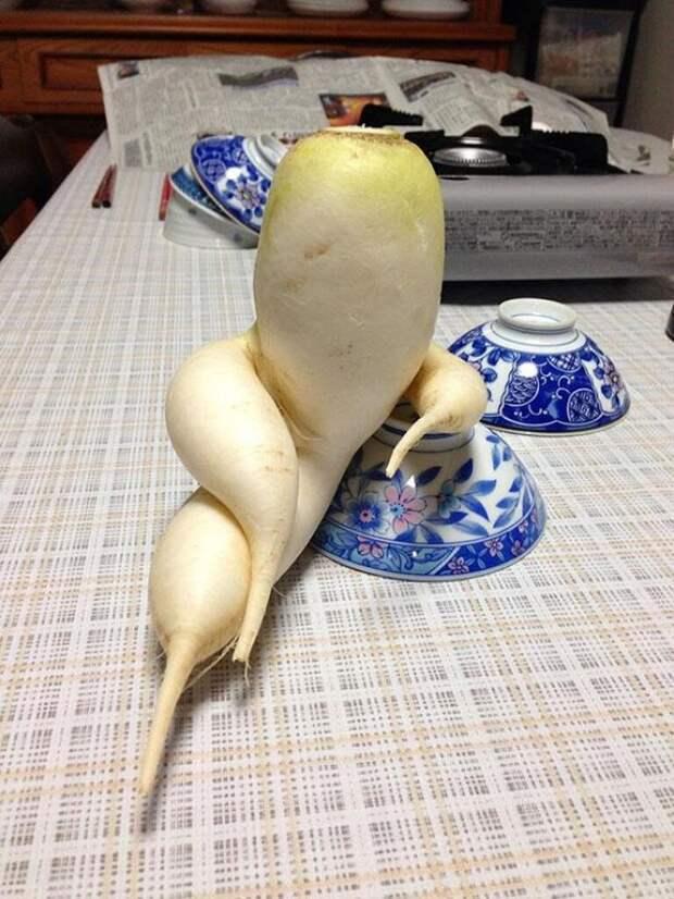 Эти овощи похожи на что угодно, только не на самих себя