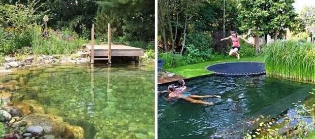 Плавательный пурд или бассейн на даче - фото