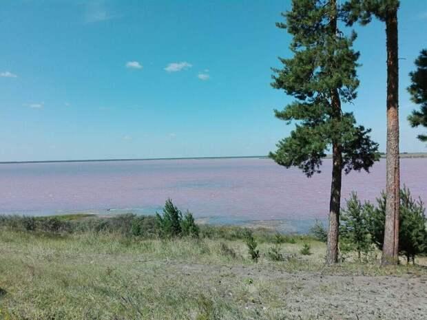 Озеро малинового цвета! Новое чудо света! Едем в Малиновое озеро!!!