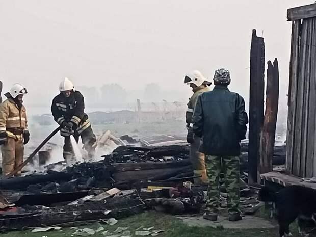 Огонь пришел с болот. Омскую деревню наполовину уничтожил пожар