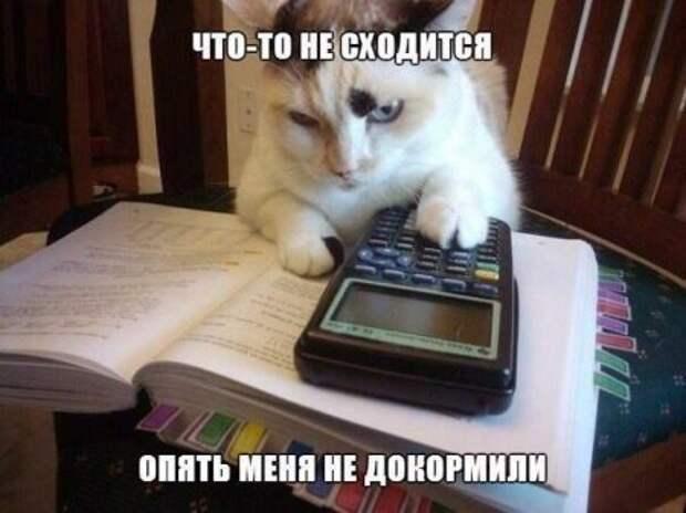 1472138132_prf-32