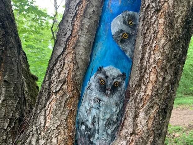 В парке «Москворецкий» создадут картины на деревьях