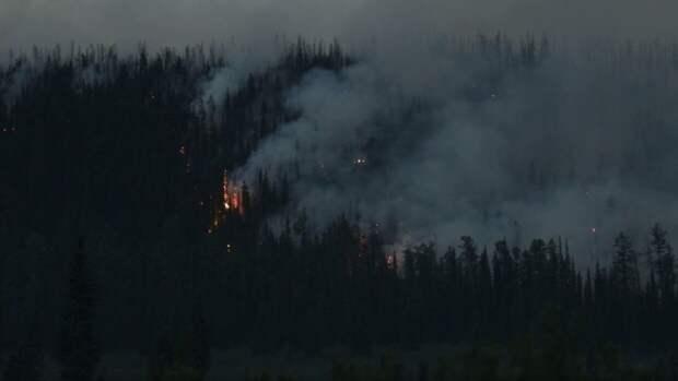 Гидрометцентр перечислил регионы РФ с наивысшими рисками природных пожаров