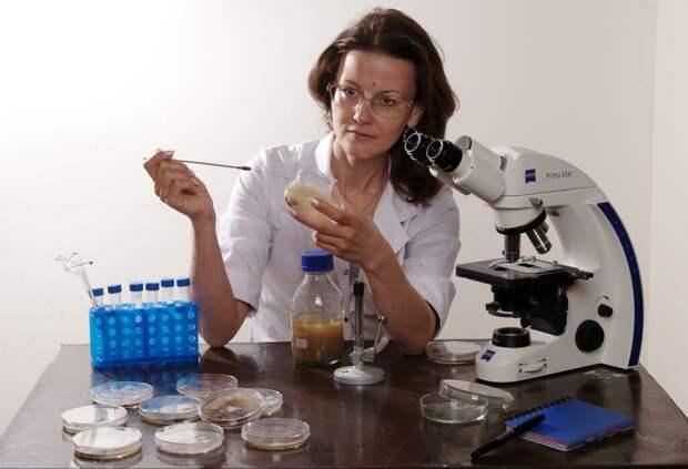 «Нельзя гарантировать, что чума или холера не приобретут защиту от антибиотиков». Биологи об устойчивости к антибиотикам — вызове XXI века