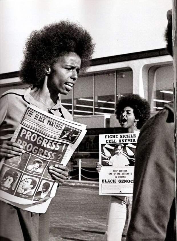 Социальные конфронтации в США 1960-х - 1970-х годов: Леворадикальная Партия черных пантер   (18)