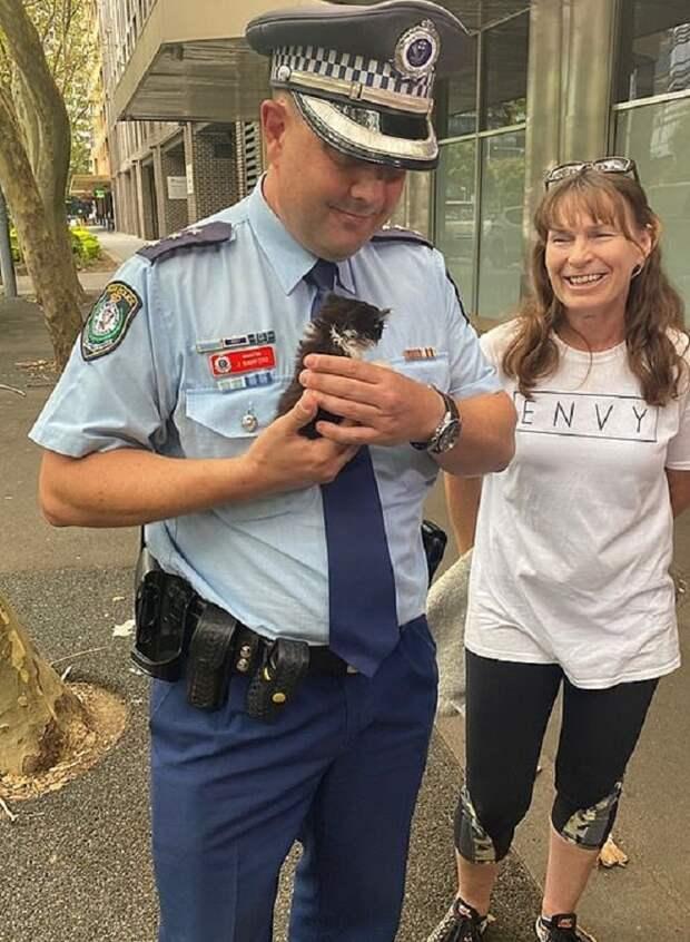 Котенок и офицер