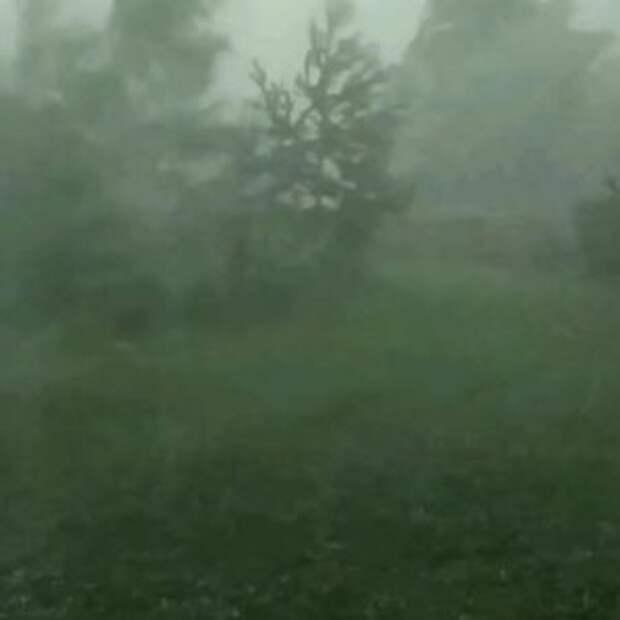 Погода на «майские» в Костроме: шторм, косые дожди и +21 градус