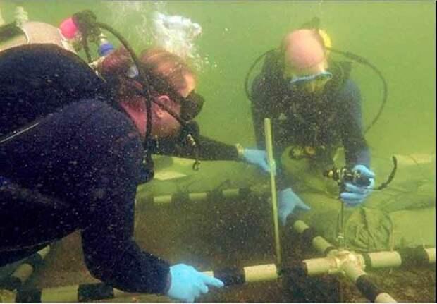 Древнее подводное захоронение Флориды намного старше, чем считалось ранее