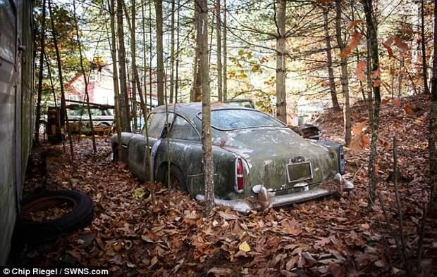 Ржавый «Астон Мартин», 40 лет простоявший в лесу, продают за 400 тысяч долларов