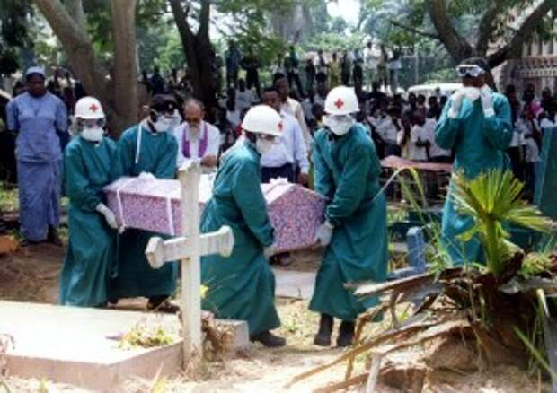 Эбола: природа наносит ответный удар