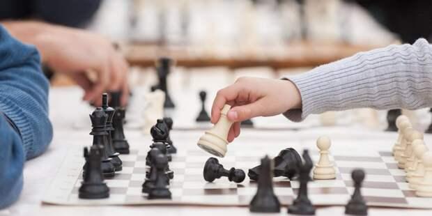 На ВДНХ отметят Международный день шахмат. Фото: mos.ru