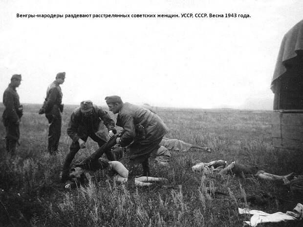 """Очередная история в стиле """"Коля с Уренгоя"""". """"Защити память героев"""" фашистской Венгрии"""
