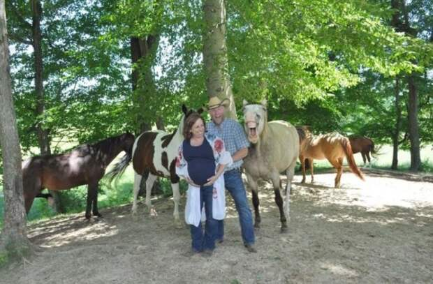 Забавный момент на фотосессии с лошадьми (5 фото)