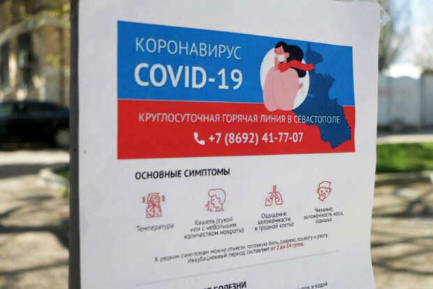 В Севастополе за неделю поступило более 7 тысяч заявок на оформление электронных пропусков
