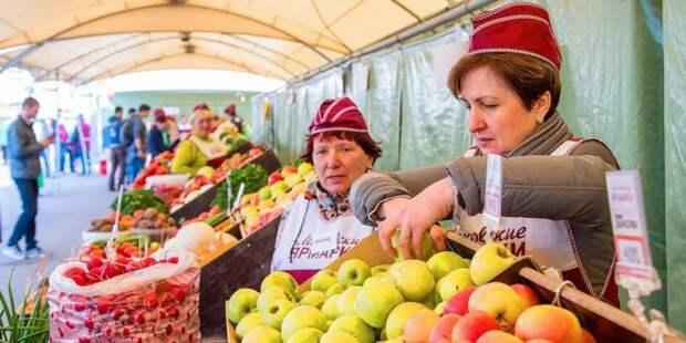 Собянин: В Москве до конца года откроется еще 10 круглогодичных ярмарок. Фото: mos.ru