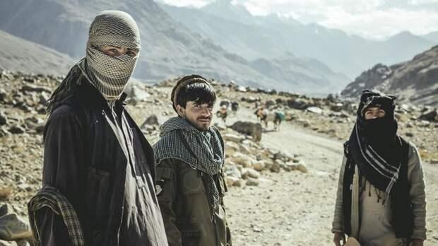 Талибы – новая реальность Афганистана. Как реагировать России?