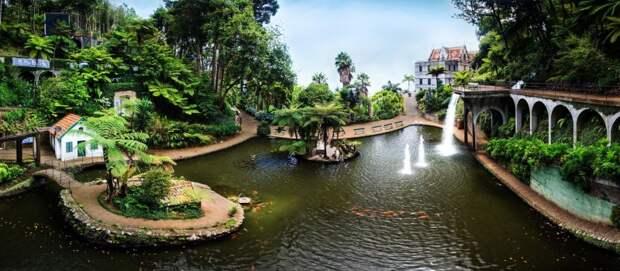 Сад Монте - фантастически красивый уголок Мадейры