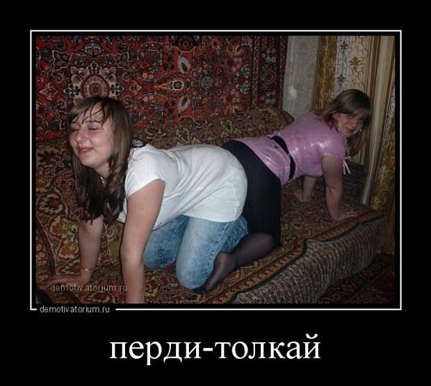 5402287_demotivatorium_ru_perditolkaj_116359 (600x539, 132Kb)