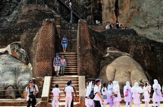 Шри-Ланка возобновила выдачу вакцинированным туристам виз по прибытии