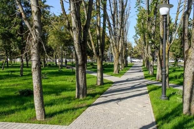 Жители Краснодара выбрали зеленые зоны для благоустройства