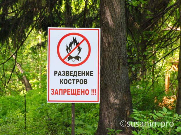 Пожароопасный сезон в лесах Удмуртии начнется 27 апреля