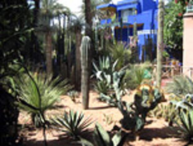 Jardin Majorelle (Сад Мажорель)